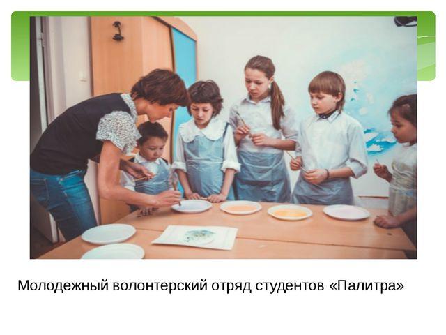 Молодежный волонтерский отряд студентов «Палитра»