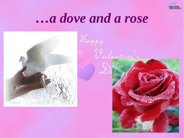 …a dove and a rose