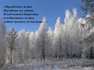 «Чародейкою зимою Околдован лес стоит. И под нежной бахромою, неподвижною, не