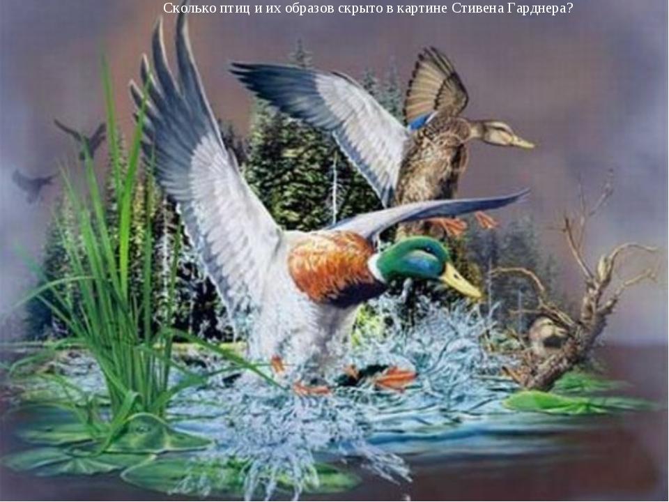 Сколько птиц и их образов скрыто в картине Стивена Гарднера?