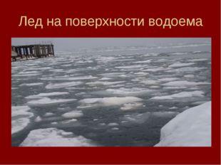 Лед на поверхности водоема