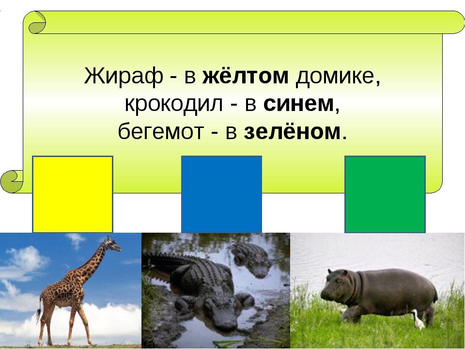 Жираф - в жёлтом домике, крокодил - в синем, бегемот - в зелёном.