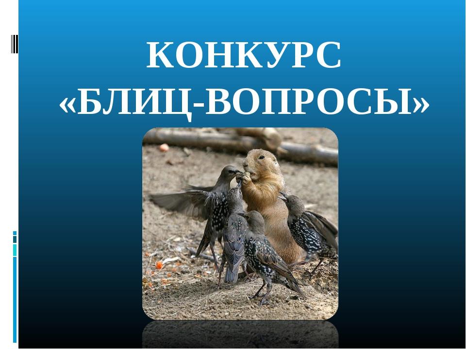 КОНКУРС «БЛИЦ-ВОПРОСЫ»