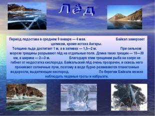 Период ледостава в среднем 9 января — 4 мая. Байкал замерзает целиком, кроме