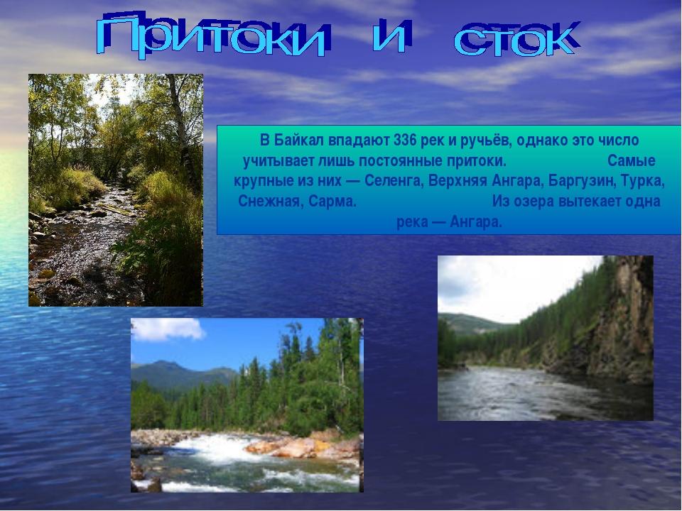 В Байкал впадают 336 рек и ручьёв, однако это число учитывает лишь постоянные...