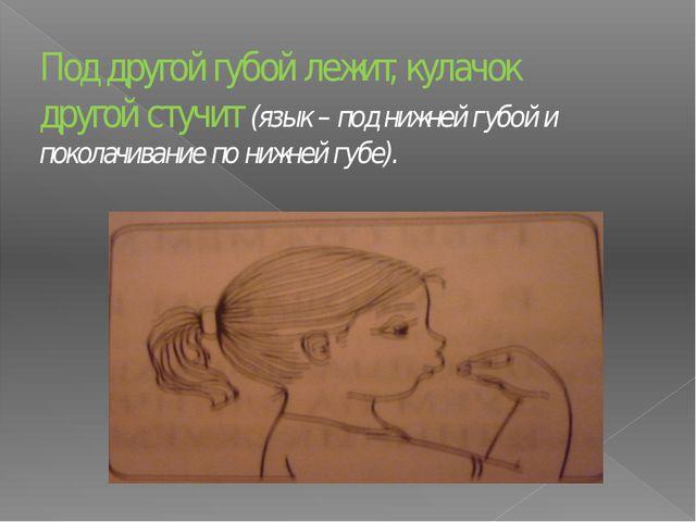 Под другой губой лежит, кулачок другой стучит (язык – под нижней губой и поко...