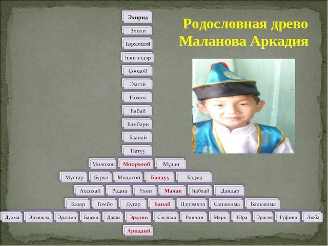 Родословная древо Маланова Аркадия