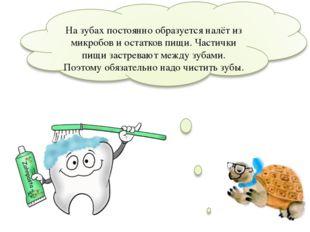 На зубах постоянно образуется налёт из микробов и остатков пищи. Частички пи