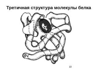 Третичная структура молекулы белка