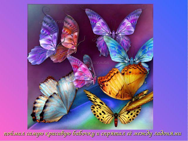 поймал самую красивую бабочку и спрятал её между ладонями