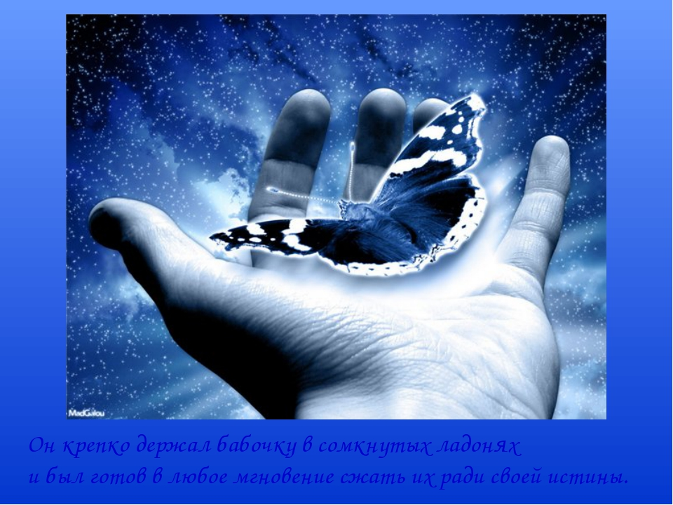 Он крепко держал бабочку в сомкнутых ладонях и был готов в любое мгновение сж...