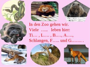 In den Zoo gehen wir. Viele ….. leben hier: Ti… , L…. , B.…, A…., Schlangen,