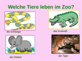 Welche Tiere leben im Zoo? die Schlange das Krokodil der Elefant der Tiger