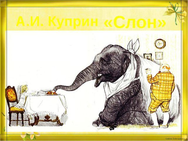 А.И. Куприн «Слон»