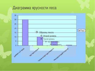 Диаграмма ярусности леса