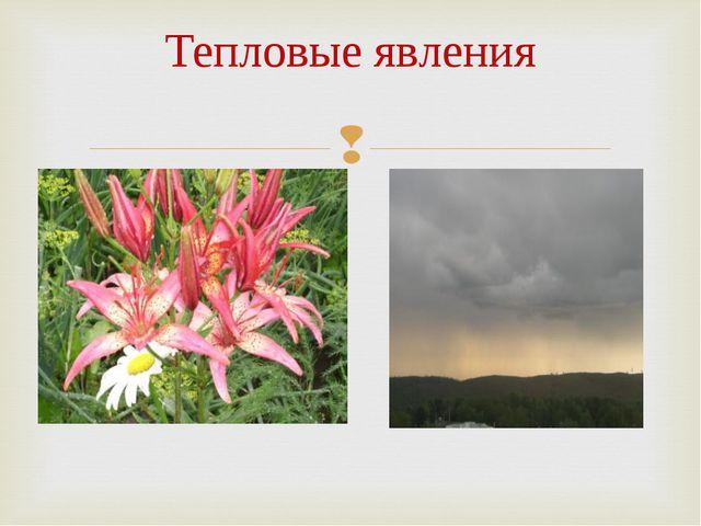 Тепловые явления Роса Дождь