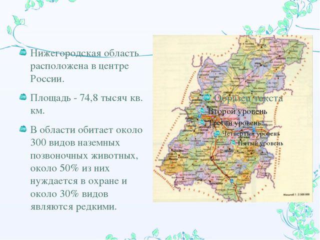 Нижегородская область расположена в центре России. Площадь - 74,8 тысяч кв. к...