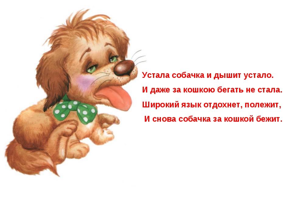 Устала собачка и дышит устало. И даже за кошкою бегать не стала. Широкий язык...