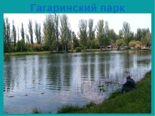 Гагаринский парк