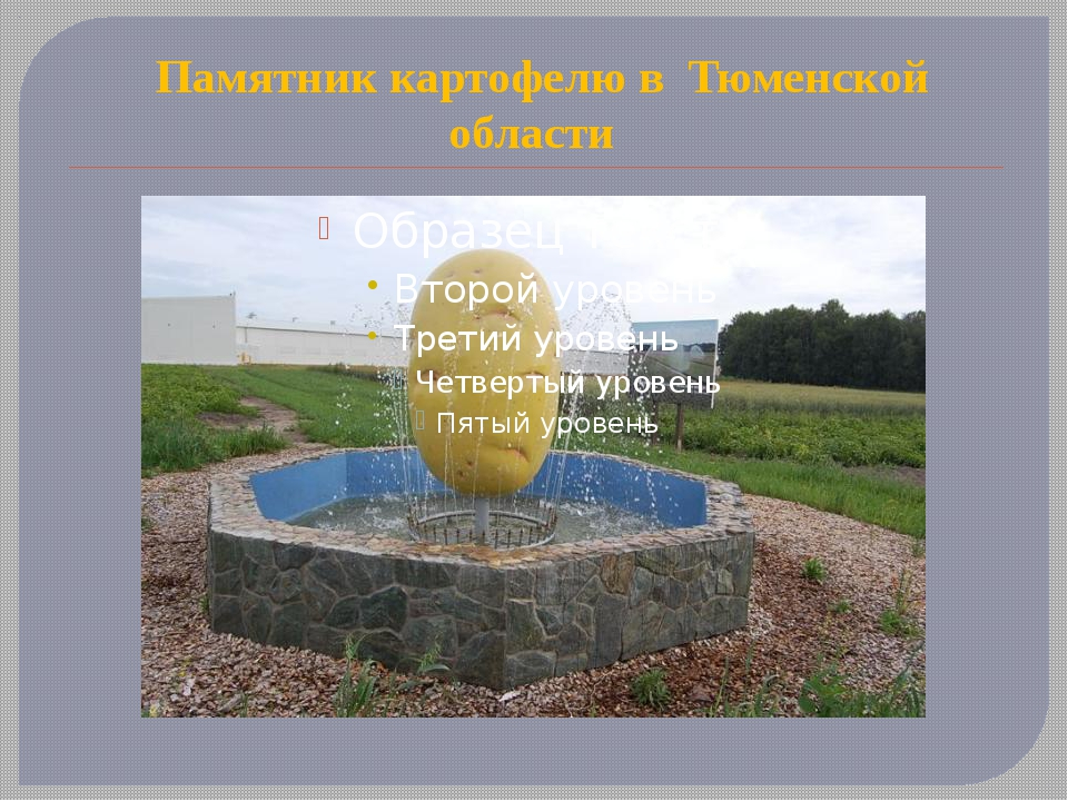 Памятник картофелю в  Тюменской области