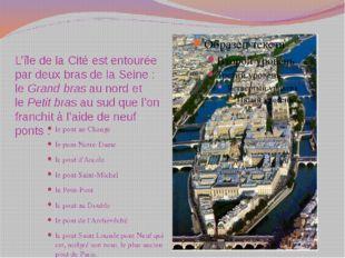 L'île de la Cité est entourée par deux bras de la Seine: leGrand brasau no