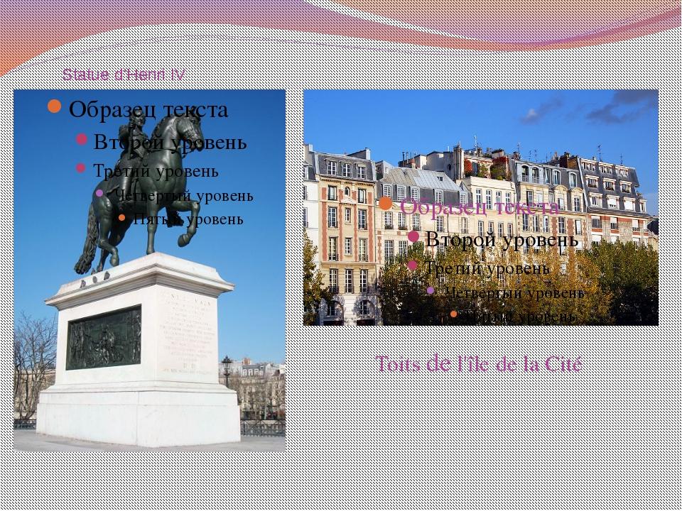 Statue d'Henri IV Toits de l'île de la Cité