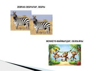 ZEBRAS-ЗЕБРАЛАР, ЗЕБРЫ MONKEYS-МАЙМЫЛДАР, ОБЯЗЬЯНЫ