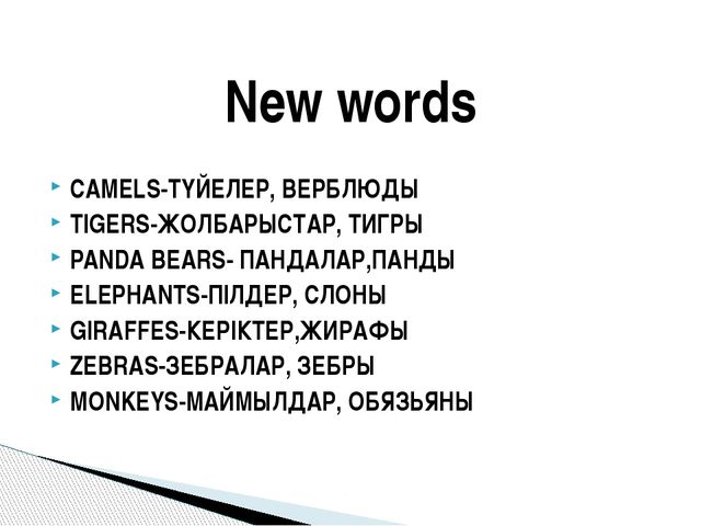CAMELS-ТҮЙЕЛЕР, ВЕРБЛЮДЫ TIGERS-ЖОЛБАРЫСТАР, ТИГРЫ PANDA BEARS- ПАНДАЛАР,ПАНД...