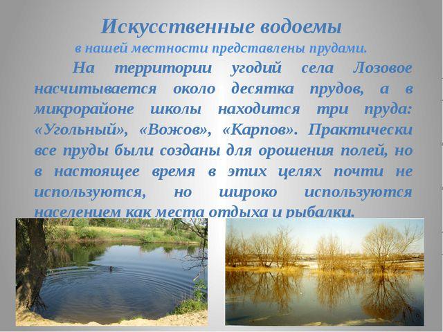 Искусственные водоемы в нашей местности представлены прудами. На территории у...