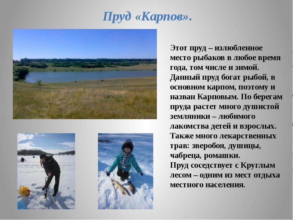 Этот пруд – излюбленное место рыбаков в любое время года, том числе и зимой....