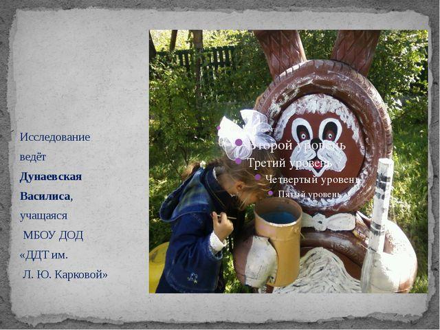 Исследование ведёт Дунаевская Василиса, учащаяся МБОУ ДОД «ДДТ им. Л. Ю. Кар...