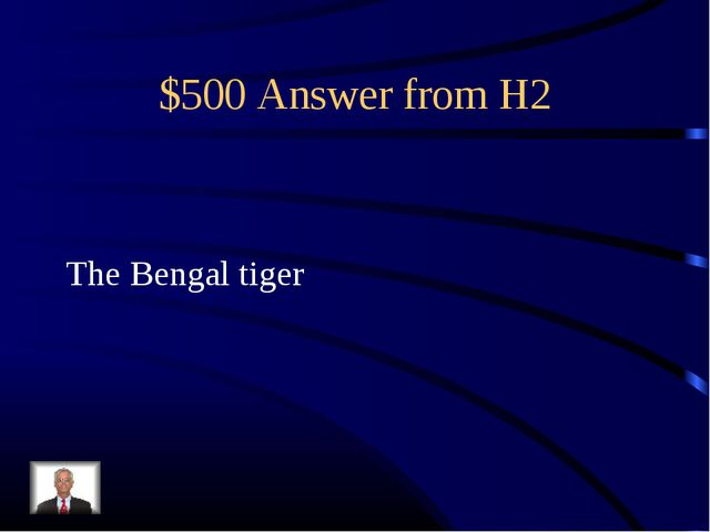 $500 Answer from H2 The Bengal tiger
