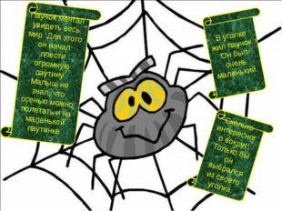 Паучок мечтал увидеть весь мир. Для этого он начал плести огромную паутину. М