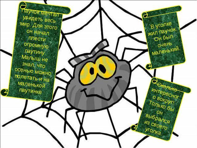 Паучок мечтал увидеть весь мир. Для этого он начал плести огромную паутину. М...