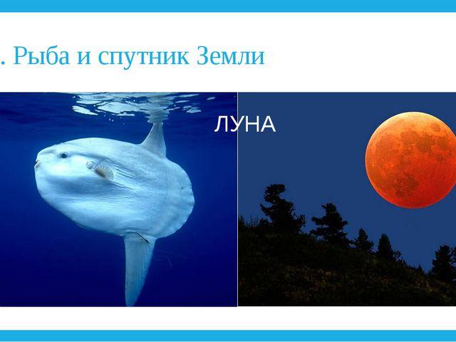 9. Рыба и спутник Земли ЛУНА