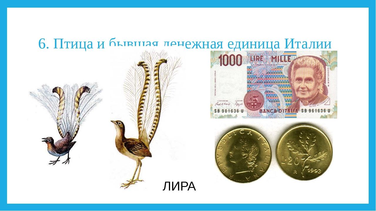 6. Птица и бывшая денежная единица Италии ЛИРА
