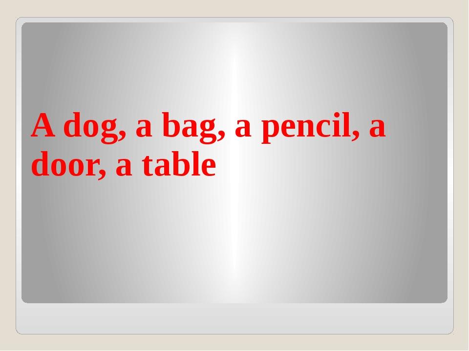 A dog, a bag, a pencil, a door, a table
