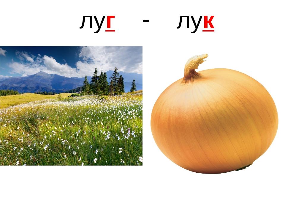 луг - лук