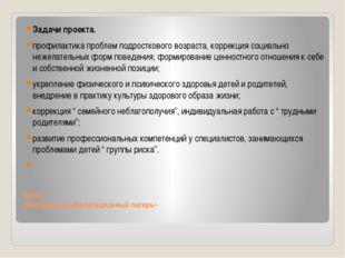 Проект «Выездной реабилитационный лагерь» Задачи проекта. профилактика пробле