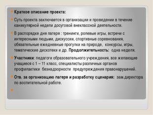 Краткое описание проекта: Суть проекта заключается в организации и проведении
