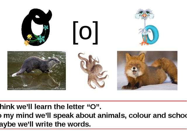 """I think we'll learn the letter """"O"""". To my mind we'll speak about animals, col..."""
