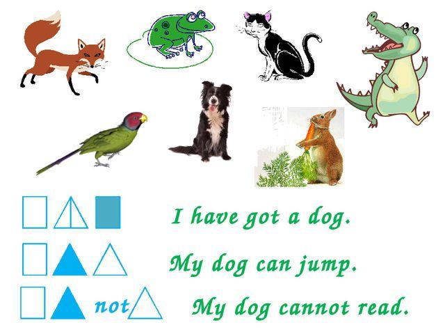 I have got a dog. My dog can jump. My dog cannot read.