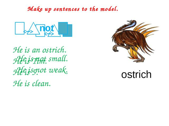 He is an ostrich. He is Tim. He is 5. He is clean. Make up sentences to the...