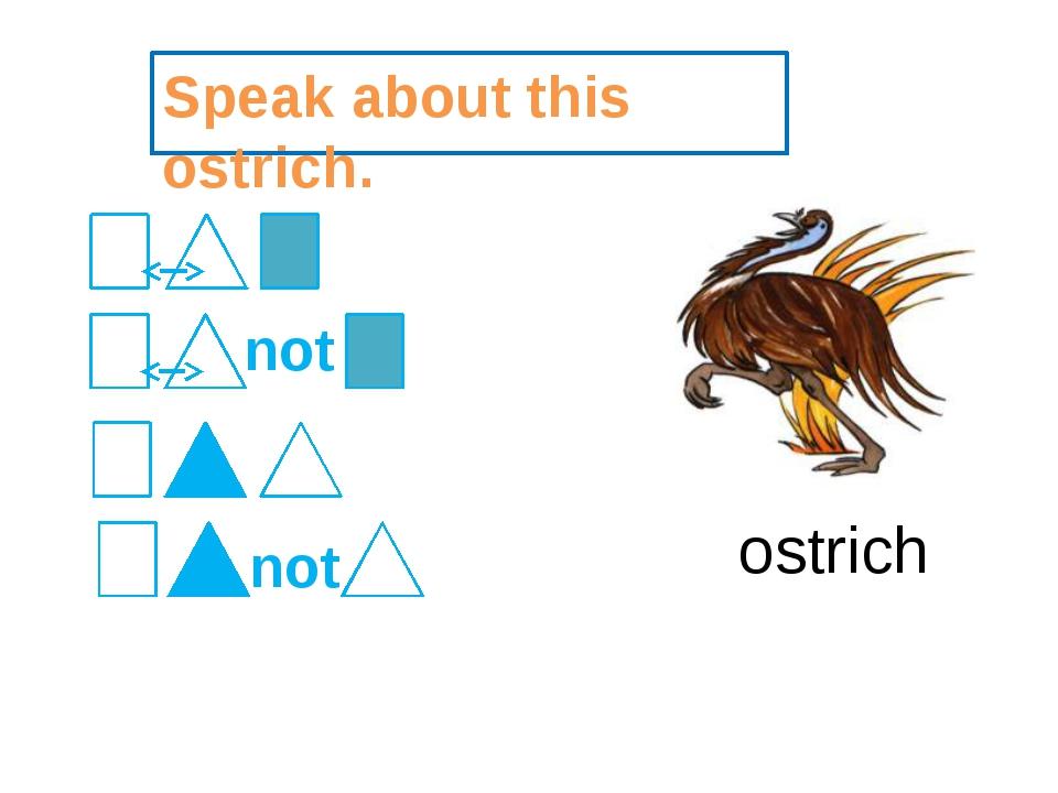 Speak about this ostrich. ostrich not not