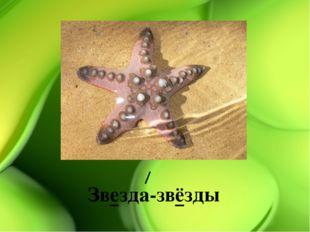 Звезда-звёзды