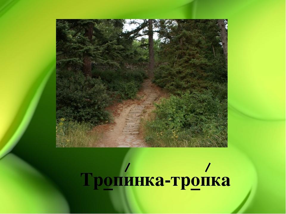 Тропинка-тропка