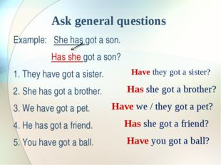 Ask general questions Example: She has got a son. Has she got a son? 1. They