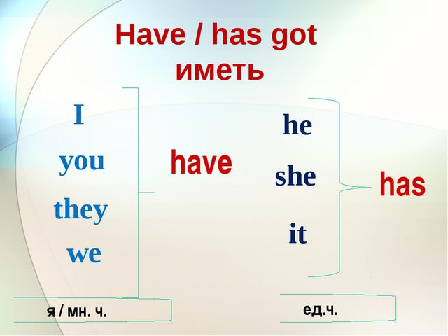 Have / has got иметь I you they we he she it have has я / мн. ч. ед.ч.