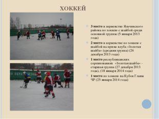 ХОККЕЙ 3 место в первенстве Яльчикского района по хоккею с шайбой среди основ