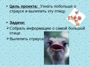 Цель проекта: Узнать побольше о страусе и вылепить эту птицу. Задачи: Собрать
